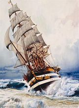 Anatolian jigsaw puzzle 1000 pieces: the Black pearl