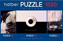 Puzzle Hatber 2х260 and 500 items: Eclectic