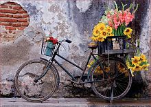Puzzle Educa 500 details: Bicycle with flowers
