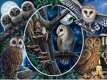 Prime 3D puzzle 500 pieces: a Collage. Owls