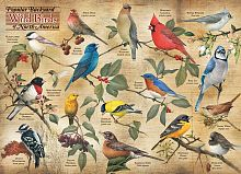 Cobble Hill puzzle 1000 pieces: Types of garden birds