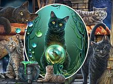 Prime 3D puzzle 500 pieces: a Collage. Cats