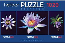 Puzzle Hatber 2х260 and 500 items: Soul flower