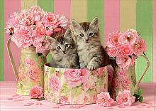 Puzzle Educa 500 items: Kittens with roses