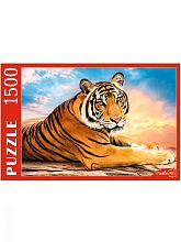 Puzzle Red Cat 1500 pieces: Big Tiger at sunset