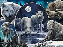 Prime 3D puzzle 500 pieces: a Collage. Wolves