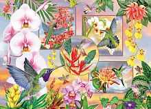 Puzzle Cobble Hill 500 pieces: hummingbirds and orchids