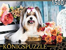 Konigspuzzle Puzzle 1500 pieces: Yorkshire Terrier in colors