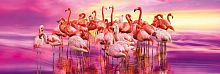 The panorama Clementoni jigsaw puzzle 1000 pieces: the Pink Flamingo