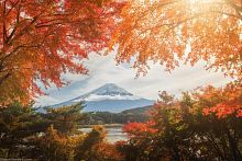 Freys 1000-piece Puzzle: Autumn in Japan