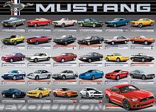 Puzzle Eurographics 1000 pieces: Evolution Ford Mustang