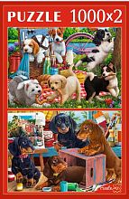 Puzzle Red Cat 2x1000 pieces: Playful puppies