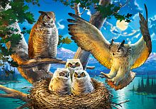 Puzzle Castorland 500 items: Owl family